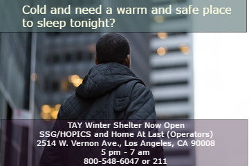 winter-shelter-for-tay
